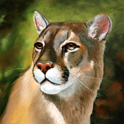 Big Cat Pastels Posters - Mountain Lion Poster by Janet Biondi