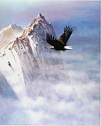 Eagle Painting Framed Prints - Mountain Majesty Framed Print by Robert Foster