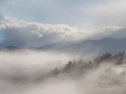 Mood Art Print Prints - Mountain Mist Print by Carol Cavalaris