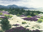 Verbena Paintings - Mountain Mist by Mary Taglieri