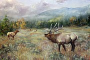 Elk Pastels - Mountain Music by Mitzi Nelson