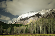 Winter Photos Prints - Mountain Paradise Print by Andrea Hazel Ihlefeld