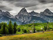 Print Card Photo Prints - Mountain Pasture Print by Steven Ainsworth