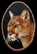 Mountain Lion Pyrography Prints - Mountain Pride Print by Minisa Robinson