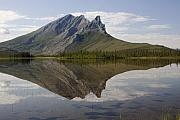 Mountain Reflection Prints - Mountain Reflection Print by Tim Grams
