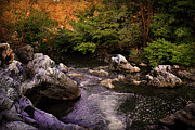 Mountain River With Rocks Print by Radoslav Nedelchev