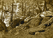 Fantasy Dreamy Oak Trees Posters - Mountain Rocks sepia Poster by Maynard Smith