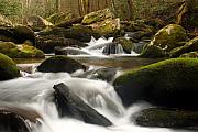 Mountain Scene Prints - Mountain Stream Print by Andrew Soundarajan
