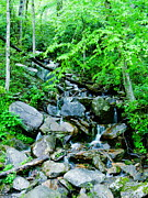 Gatlinburg Tennessee Prints - Mountain Stream Print by Utopia Concepts