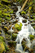 Creek Greeting Cards Prints - Mountain Stream Falls Print by Andrea Hazel Ihlefeld