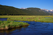 Colorado Stream Posters - Mountain Stream in Rocky Mountain National Park Poster by ELITE IMAGE photography By Chad McDermott