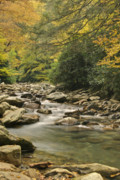 Smokey Mountains Framed Prints - Mountain Stream Framed Print by Michael Peychich