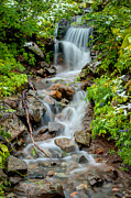 Cascades Prints - Mountain Stream Print by Rich Leighton