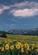 Cache Prints - Mountain Sunset in Spring Print by Leland Howard