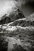 Barren Photos - Mountain Track by David Bowman