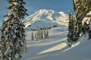 Snow Drifts Metal Prints - Mountainous Landscape In Mt. Rainer Metal Print by Raymond Gehman