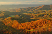 Shenandoah Valley Metal Prints - Mountainous Sunset Landscape Metal Print by Raymond Gehman