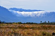 Stellenbosch Photo Posters - Mountains in clouds Poster by Werner Lehmann