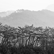 Eduard Kraft - Mountains of South Korea