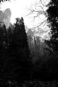 Yosemite Village Prints - Mountains of Yosemite . 7D6214 . Black and White Print by Wingsdomain Art and Photography