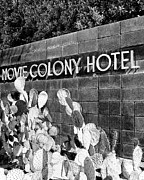 Midcentury Prints - MOVIE COLONY BW Palm Springs Print by William Dey