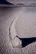 Racetrack Photos - Moving Rocks Number 2  Death Valley BW by Steve Gadomski