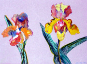 Orchids Drawings - Mr. and Mrs. Yellow Iris by Mindy Newman