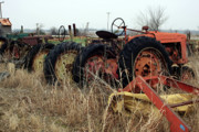 Old Tractors Photos - Mr Haineys by Joy Tudor