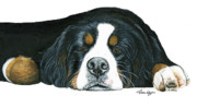 Dog Paw Paintings - Mr Mellow by Liane Weyers