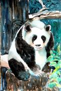 Zoo Drawings Framed Prints - Mr. Panda Framed Print by Mindy Newman
