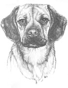 Designer Dogs - Mr. Puggle by Barbara Keith