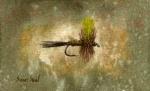Fly Fishing Painting Posters - Mr. Rapidan Poster by Sean Seal