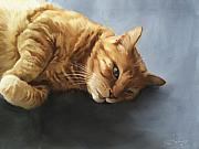Sleeping Cat Prints - Mr.Snuggles Print by Simon Sturge