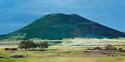 Shed Painting Prints - Mt. Capulin in Summer Print by Joshua Martin