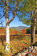 Mt Chocorua Posters - Mt. Chocorua Autumn Vertical Poster by Larry Landolfi