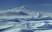 Erebus Photos - Mt Erebus, 3795 M, With Volcanic Plume by Robin Smith
