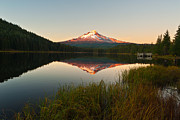 Oregon State Art - Mt Hood from Lake Trillium by Alvin Kroon