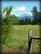 Barbed Wire Fences Framed Prints - Mt. McLaughlin Framed Print by Cindy Wright