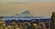 Snow Cap Photos - Mt Rainer Fall Color Rising by James Heckt