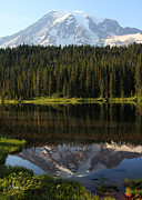 Samantha Framed Prints - Mt Rainer Reflection  Framed Print by Samantha Panzera