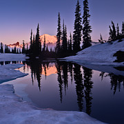 Tipsoo Framed Prints - Mt Rainier from Lake Tipsoo Framed Print by Alvin Kroon
