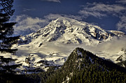 Snow-capped Peak Prints - Mt Rainier Print by Heather Applegate