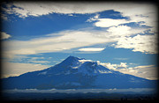Mountains Digital Art - Mt. Shasta by Marilyn Wilson