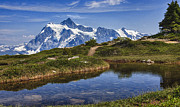 A A Framed Prints - Mt Shuksan Framed Print by A A