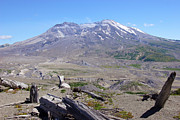 Helen Framed Prints - Mt. St. Helen Washington state. Framed Print by Gino Rigucci