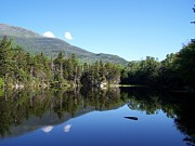 All - Mt Washington and Lost Pond by Frank LaFerriere