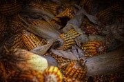 Corn Digital Art Posters - Muddle Of Maize Poster by The Stone Age
