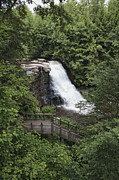 Swallow Falls State Park Art - Muddy Creek Falls at Swallow Falls State Park by William Kuta