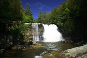 Swallow Falls State Park Art - Muddy Creek Falls by Matthew Winn
