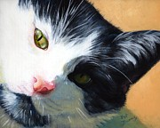 Black And White Cats Paintings - Muff by Pat Burns